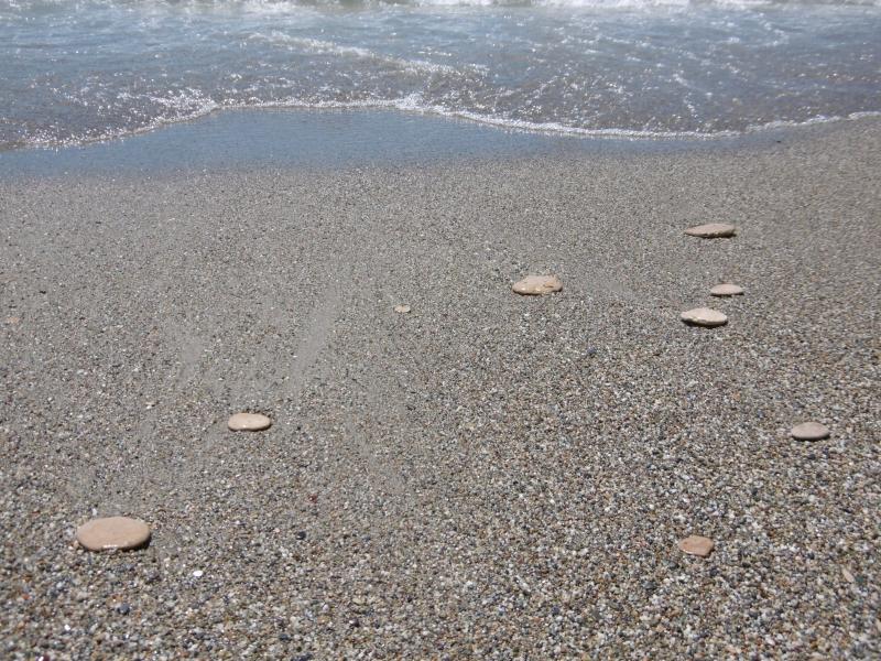 Gordy's flat stones